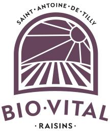 Raisins Bio-Vital