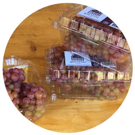 Nos raisins en épicerie
